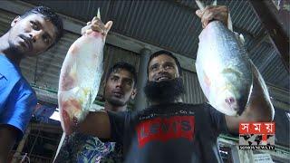 বড় ইলিশের সরবরাহে সরগরম মাছের বাজার | Ilish Fish Price | Somoy TV