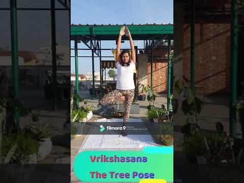 10 minute morning yoga for beginners with surya namaskar
