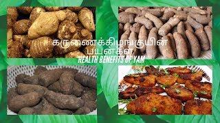 கருணைக்கிழங்குயின் பயன்கள் Health Benefits Of Yam