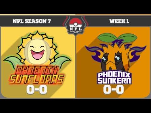"""""""Battle of the Phoenix Teams"""" Pokemon SuMo NPL Season 7 Battle Week 1- Vs. Phoenix Sunkerns"""