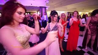 زفاف حمودة & سيڤين عرس سوري في هولندا