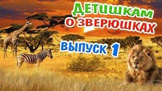 Детям о животных-1! Бегемот! Лев! Зебра! Жираф! Развивающее видео/About animals for toddler!