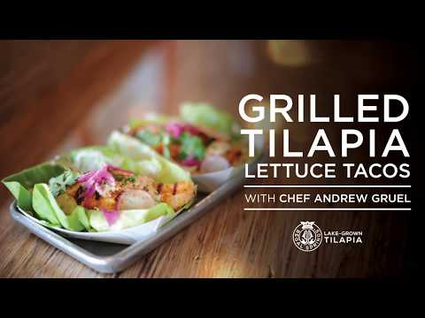 Grilled Tilapia Lettuce Tacos Recipe By Andrew Gruel
