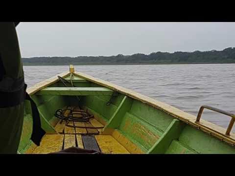 Mi experiencia en el Amazonas