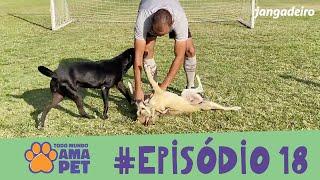 Todo Mundo Ama Pet- EPISÓDIO 18