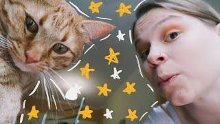 Ο Γάτος Διαλέγει το Look της Μέρας μου