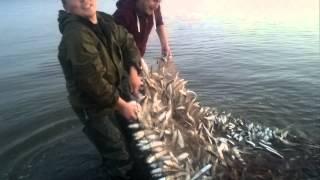 рибалка п. Гида