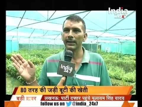Reports on the herbal farming in Uttarakhand