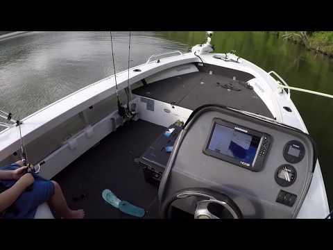 Australian Bass Fishing Borumba Dam