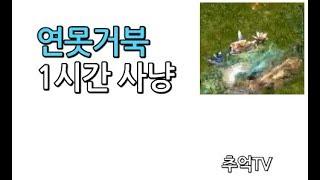 [거상]흑룡담의 연못거북 1시간 사냥