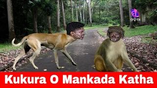 Golmaal || Kukura O Mankada Katha || Funny Videos #Odia Comedy Web Series