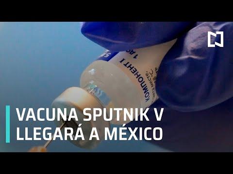 México recibirá primeras dosis de vacuna rusa Sputnik V contra COVID-19: Ebrard  - Por las Mañanas