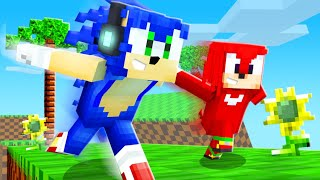 VIRAMOS PERSONAGENS DO FILME SONIC NO MINECRAFT !! - Minecraft Corrida Sonic