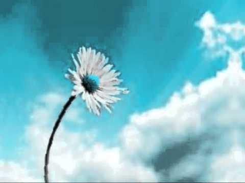 Watch The Sky - Ryan Farish