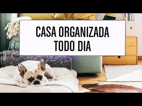 Como organizar a casa todos os dias | Thais Godinho