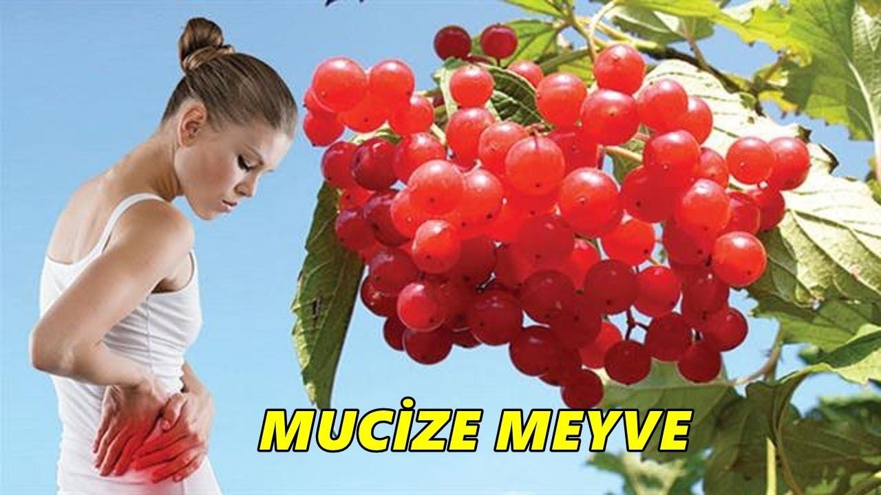 Mucize Meyve