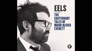 EELS - Accident Prone (LIVE WNYC) - (audio stream)