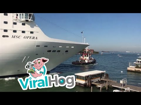 Bodhi - Massive Cruise Ship Runs into a Riverboat and the Dock (Video)