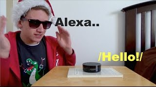 Playing 20 Questions With an Amazon Alexa
