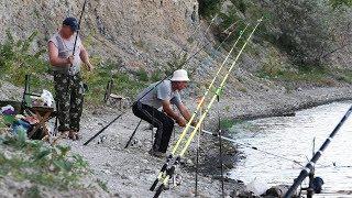 Рыбалка на сазан на ДОНУ ЛОВЛЯ НА СОСКИ САЗАНА