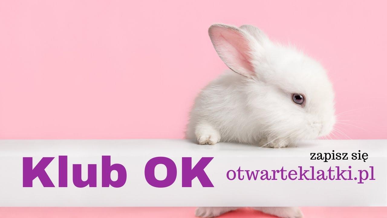 Klub OK