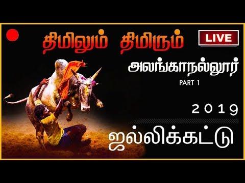 Alanganallur Jallikattu 2019 | Madurai | Part -1