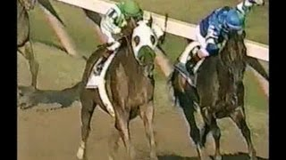 2001 Travers Stakes - Point Given