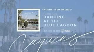 Cayucas - Moony Eyed Walrus