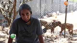 هيفاء رزاقي : لا املك مدخولا، توقفت عن العمل من اجل التطوع لحماية الحيوانات الظالة