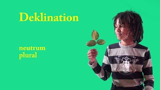 Deklination (neutrum plural)