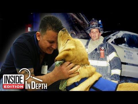How 9/11 Firefighter Met His Service Dog