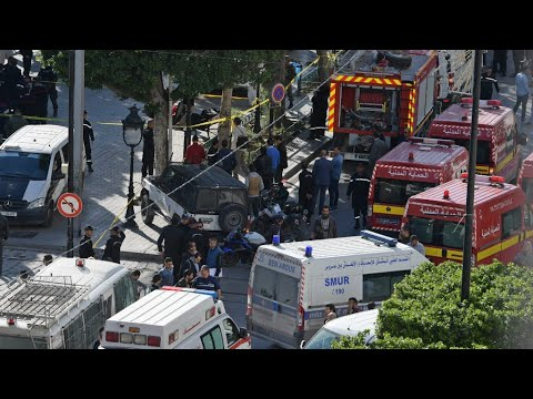 Female suicide bomber targets police in central Tunis