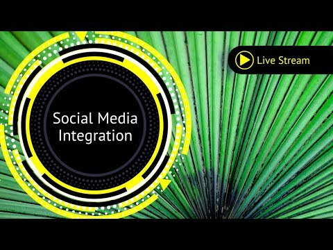 Organic Social Media Integration and Strategy for Business