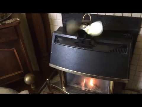 caframo-ecofan-belair-review-for-valor-homeflame-super-470mn-gas-stove