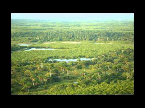 Guinea-Bissau bei paesaggi - alberghi alloggi voyage vela