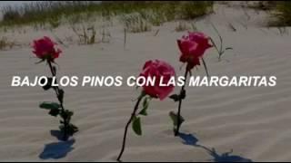 13 BEACHES Lana Del Rey Subtitulada Español
