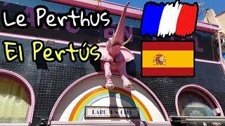 Quirúrgicas perthus medias