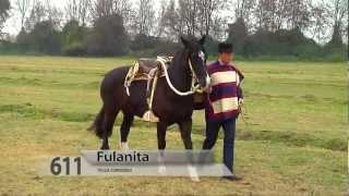 611 FULANITA | REMATE 2012