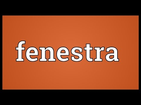 Fenestra Meaning