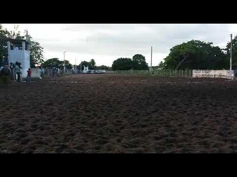 Égua luma show é testada e diferente primeiro lugar