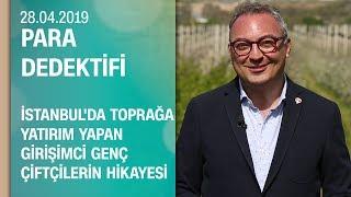 İstanbul'da toprağa yatırım yapan girişimci ve genç çiftçilerin hikayesi - Para Dedektifi 28.04.2019