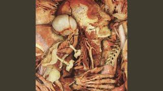 Morgagnic Anatomics