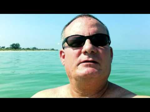 Florida Gulf Water Temperatures