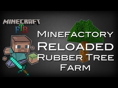Rubber Tree Vyhled 225 V 225 N 237 Beatzone Cz