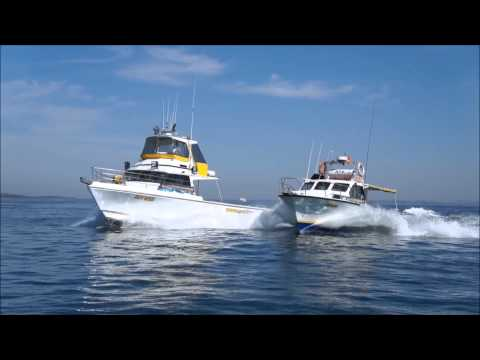 Proline Fishing Charters vessels.