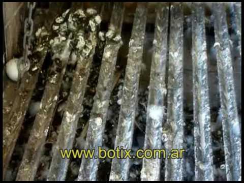 Ahuyentar las palomas del balcon mejora el nivel de vida for Ahuyentar palomas del balcon