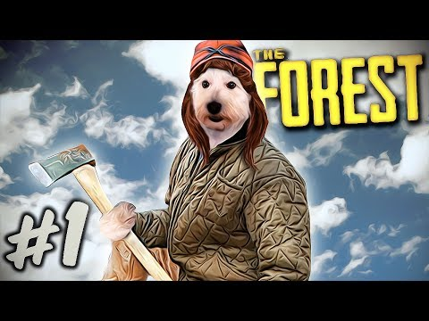 the-forest---gameplay-/-walkthrough-/-playthrough---part-1---we-must-save-timmy!