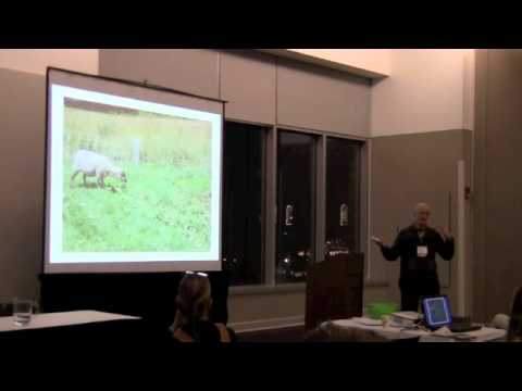 Response of Weaned, Spring-born Grass-fed Organic Lambs to Dewormer and Grain