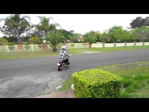 Honda z50 monkey bike motor for sale ebay johnpolus