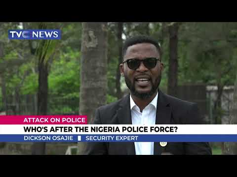 Who Is After The Nigeria Police Force?